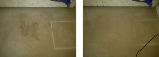 Coffee Stain Before and After